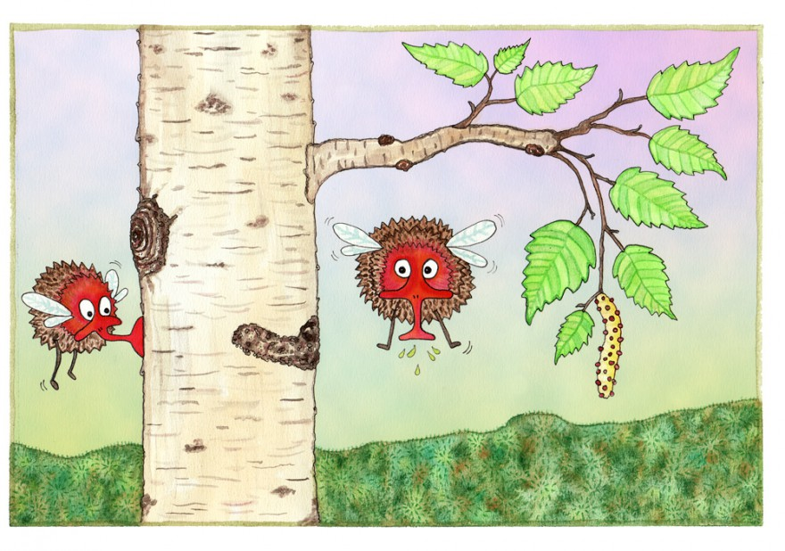 webb-Kottmyggor-björksav