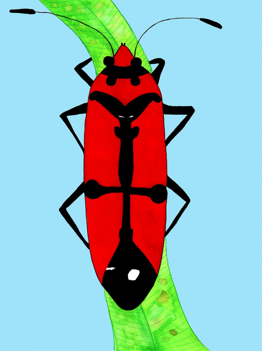webb-kyrkmack-rödlogga12