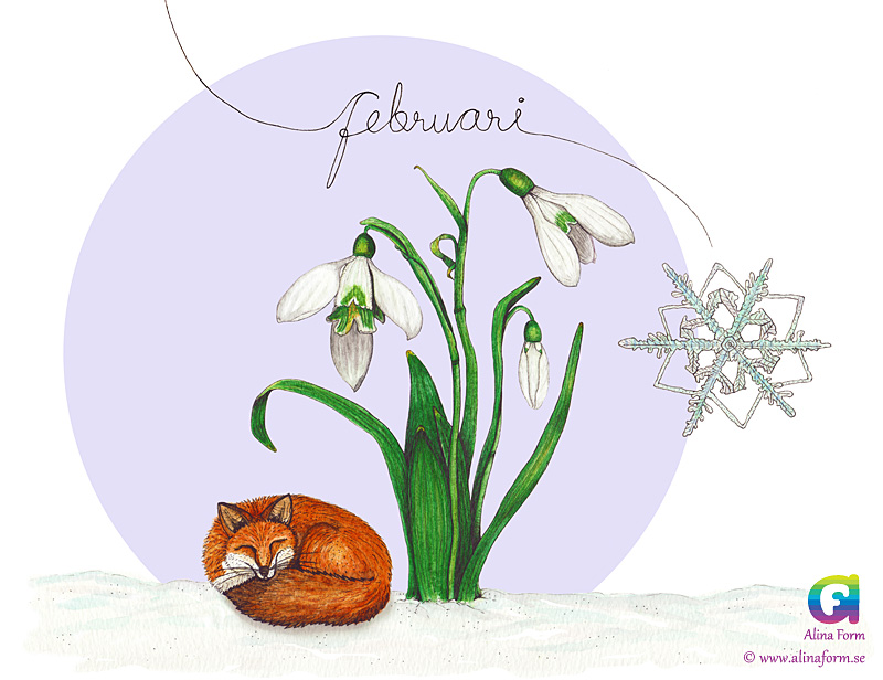 kalender-2017-februari-rav-snodroppe-fb