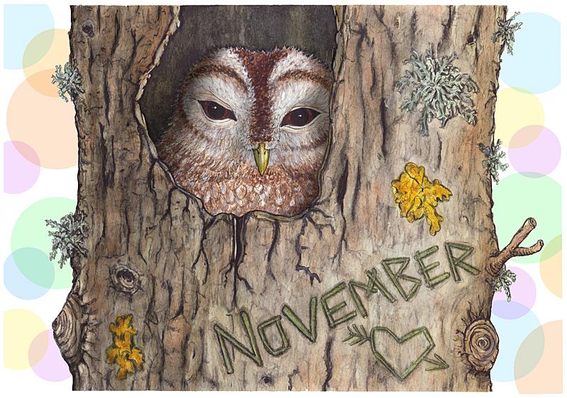 kalender-2017-november-kattuggla-bubblor-fb
